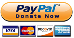 paypal-button-250px